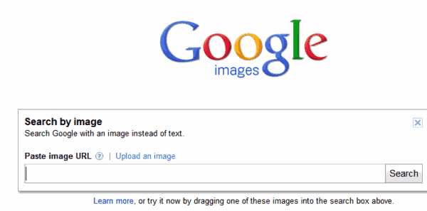 upload image on google search. google search by image. The search results page displays the uploaded image