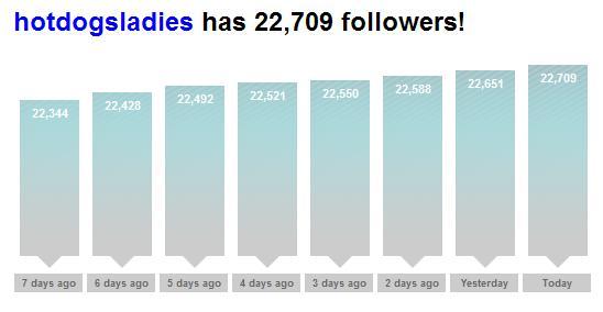 twitter follower counter