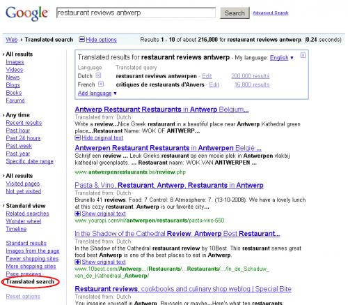 google translated search