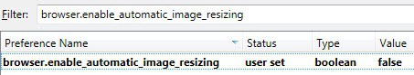 browser enable automatic image resizing