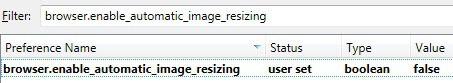 browser enable automatic image resizing