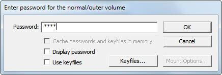 truecrypt password