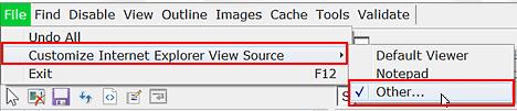 customize internet explorer view source