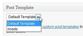 post template wordpress