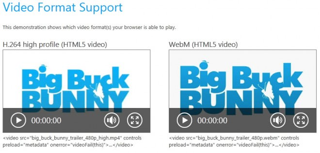 internet explorer video format support
