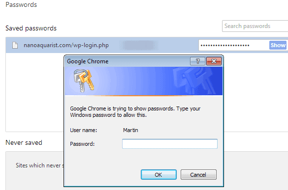 google chrome master password