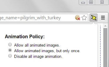 animation policy