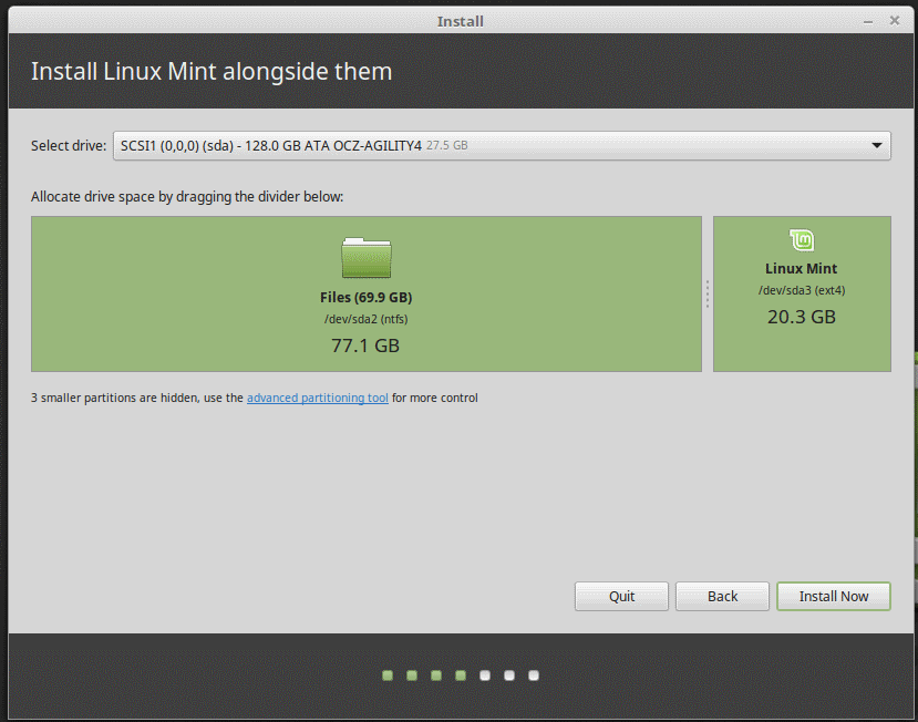 Linux Mint Installer Partitions