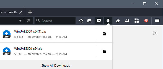 firefox old download information