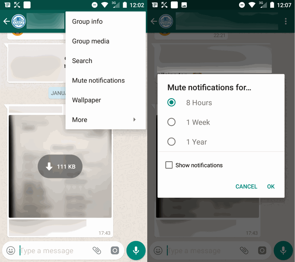 whatsapp mute group chat notifications