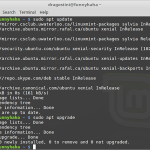 updating LinuxMint