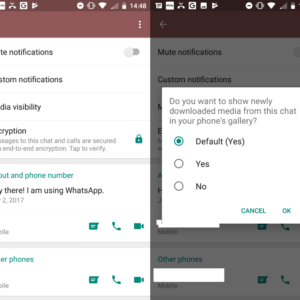 whatsapp chat visibility