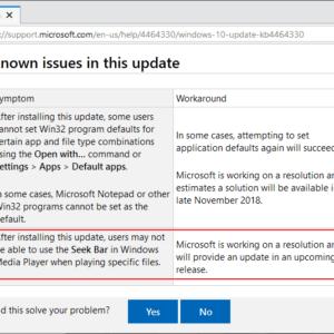 windows microsoft issue description
