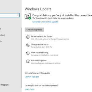 windows 10 home pause updates