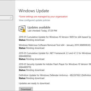 windows updates january 2019