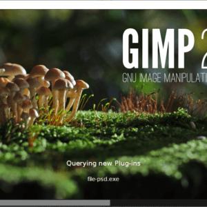 gimp 2.10.10