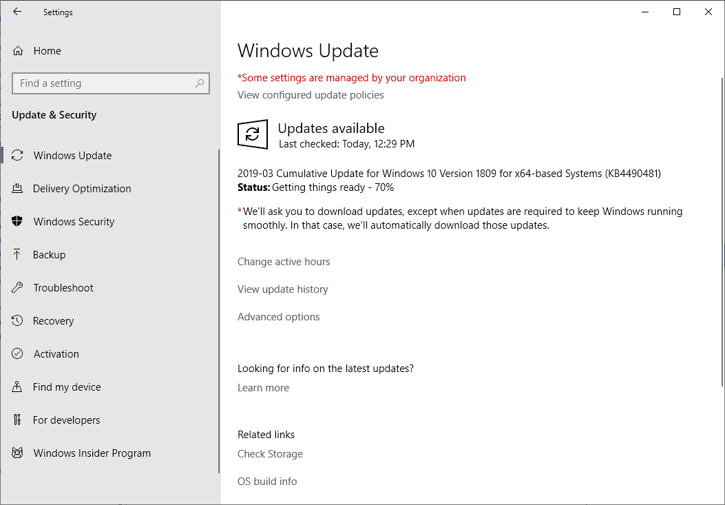 Windows 10 1809 KB4490481: the missing patch arrives