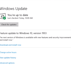 feature update to windows 10 version 1903