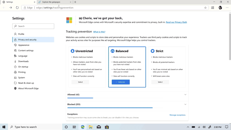 Microsoft unveils new Edge Privacy Tools concept