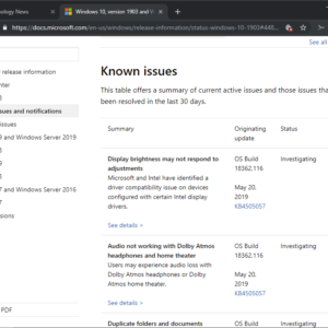 windows 10 1903 known issues