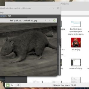 Feh is a light-weight command-line image viewer for Linux
