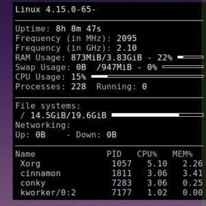 Conky is a highly customizable system monitor for Linux