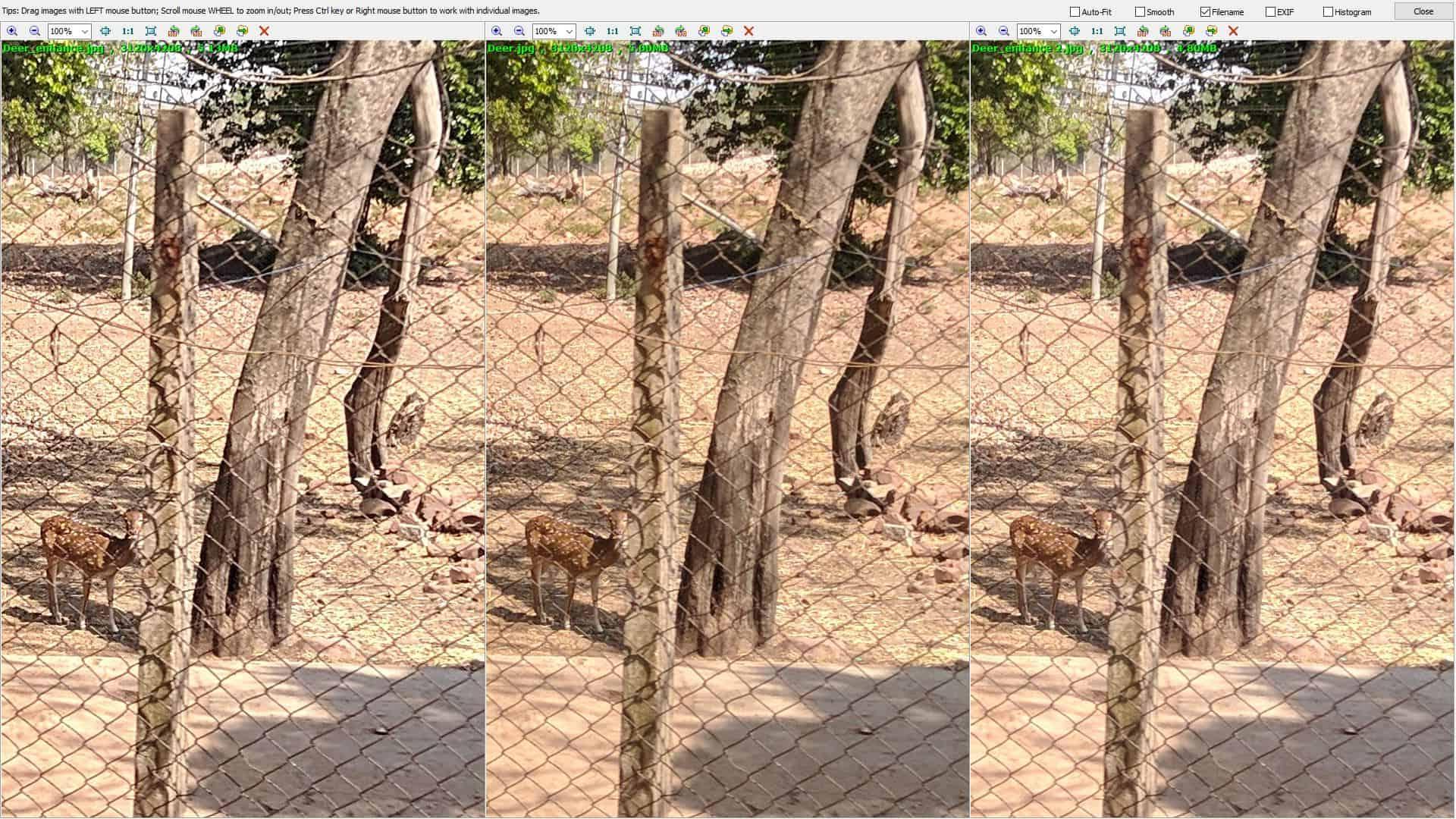 Fenophoto comparison 2