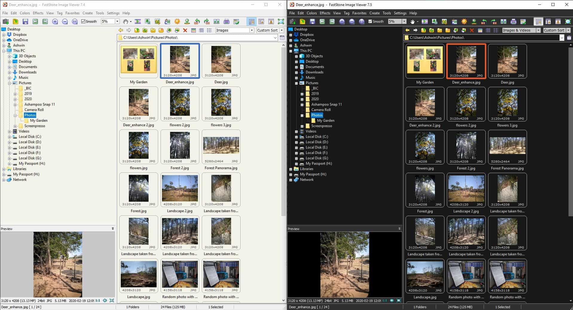 FastStone Image Viewer Bright Vs Dark theme