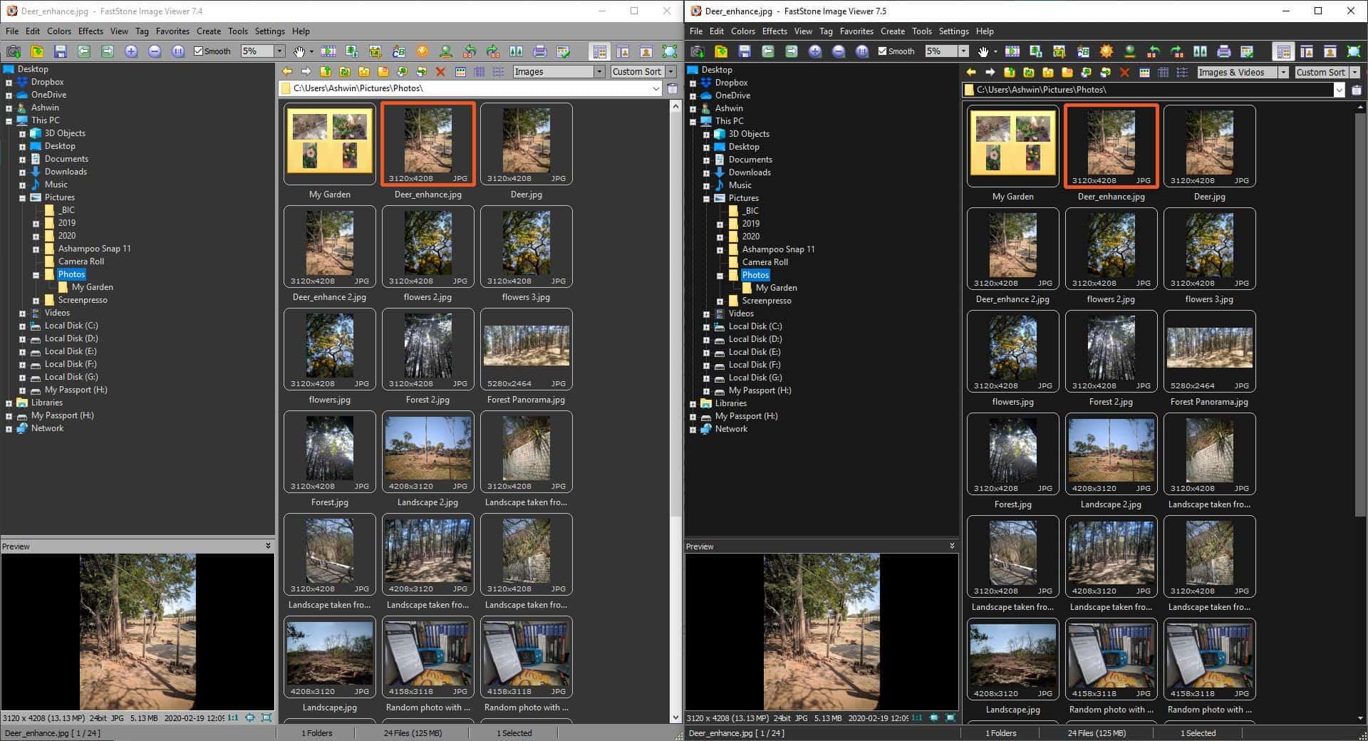 FastStone Image Viewer Gray Vs Dark theme