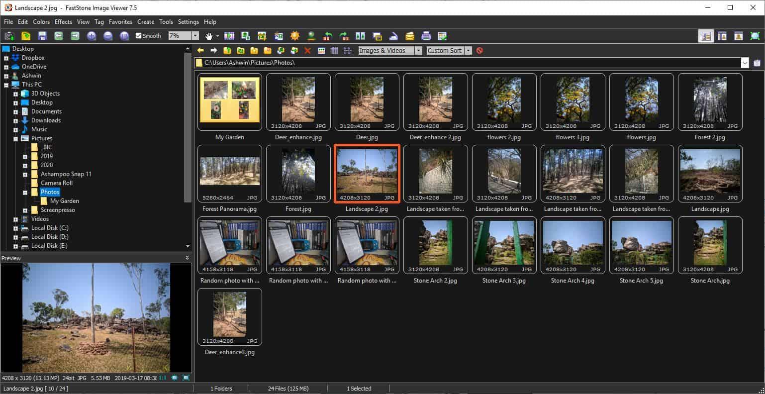 FastStone Image Viewer dark theme