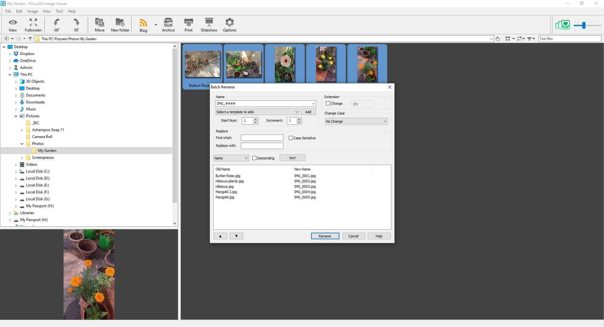 FocusOn Image Viewer Batch Renamer tool