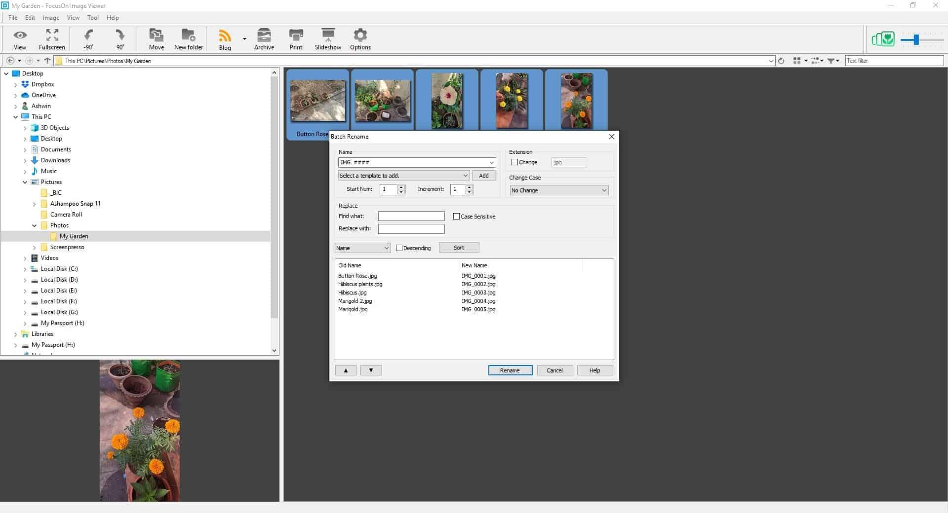 FocusOn Image Viewer Batch Renamer tool