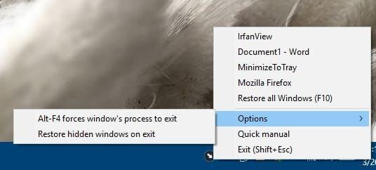 MinimizeToTray options