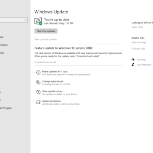 windows 10 version 20H2 feature update