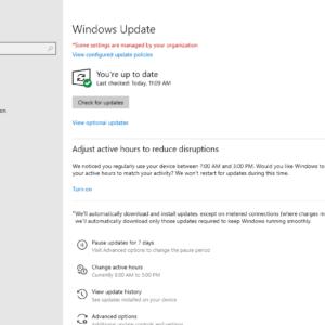 windows update pause 2020 december