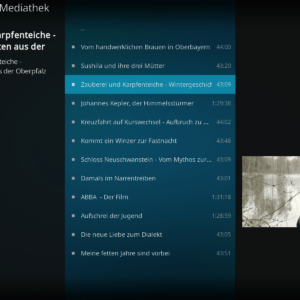 kodi 19 interface