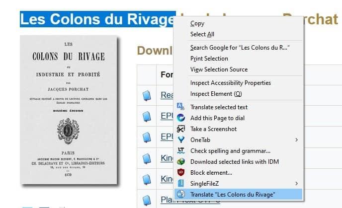Web Translate - context menu action