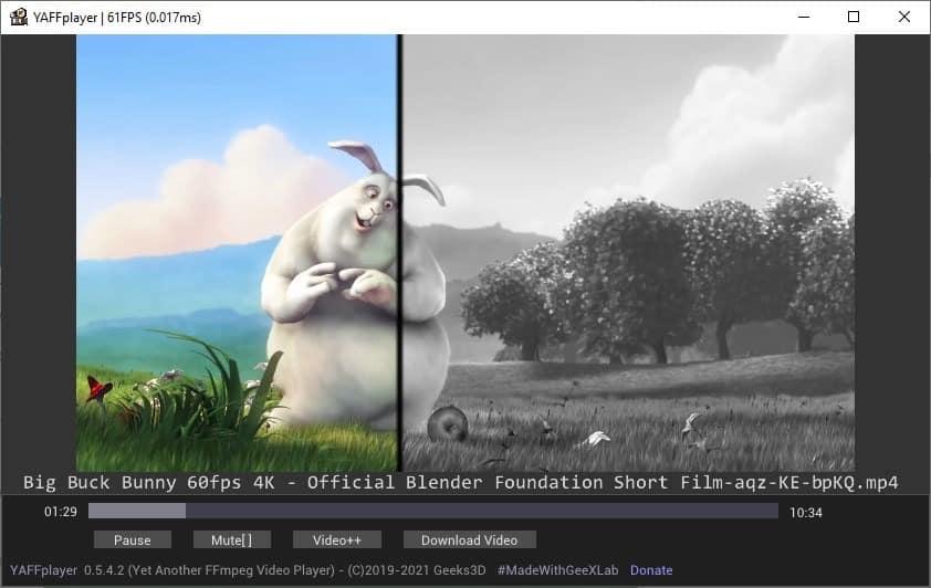 YAFFplayer gray video filter effect