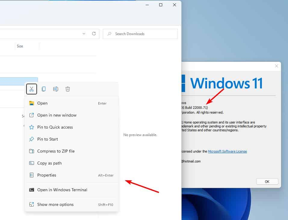Windows 11 Insider Preview Build 22000.71 - no acrylic menu in Explorer